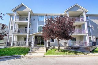 Photo 40: 105 5105 Valleyview Park SE in Calgary: Dover Apartment for sale : MLS®# A1138950
