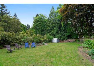 Photo 19: 11628 212TH Street in Maple Ridge: Southwest Maple Ridge House for sale : MLS®# V1122127