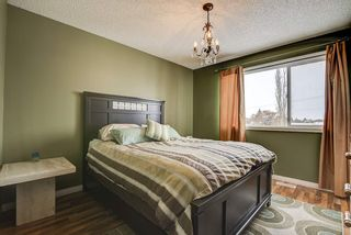 Photo 25: 219 WESTWOOD Point: Fort Saskatchewan House for sale : MLS®# E4228598
