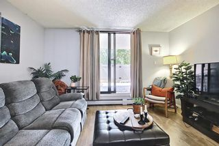 Photo 9: 104 30 Mchugh Court NE in Calgary: Mayland Heights Apartment for sale : MLS®# A1123350