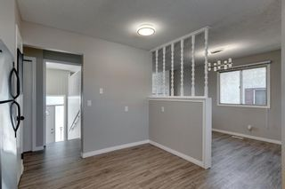 Photo 19: 3812 49 Street NE in Calgary: Whitehorn Detached for sale : MLS®# A1054455