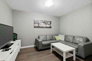 Photo 14: 8403 304 Mackenzie Way: Airdrie Apartment for sale : MLS®# A1146361