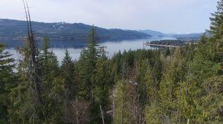 Photo 2: Lot 41 Klondike Trail: Anglemont Vacant Land for sale (North Shuswap)  : MLS®# 10228883