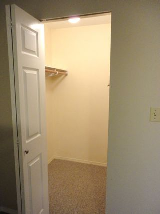 Photo 25: 9168 160A STREET in MAPLE GLEN: House for sale
