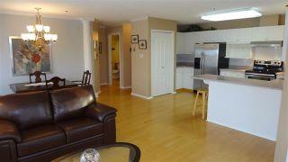 Photo 9: 311 10610 76 Street in Edmonton: Zone 19 Condo for sale : MLS®# E4227093
