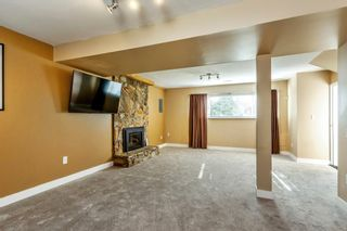Photo 17: 22631 LEE Avenue in Maple Ridge: East Central House for sale : MLS®# R2315971
