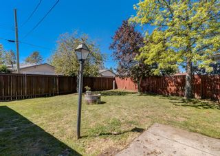 Photo 21: 31 Penworth Place SE in Calgary: Penbrooke Meadows Detached for sale : MLS®# A1120647