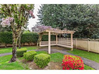 "Photo 33: 410 33731 MARSHALL Road in Abbotsford: Central Abbotsford Condo for sale in ""STEPHANIE PLACE"" : MLS®# R2573833"