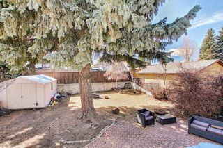 Photo 32: 687 Brookpark Drive SW in Calgary: Braeside Detached for sale : MLS®# A1093005