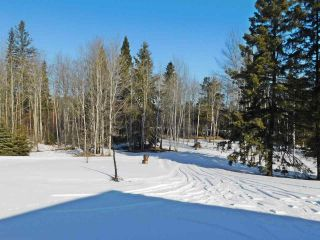 Photo 7: 40 57108  Rg Rd 220: Rural Sturgeon County House for sale : MLS®# E4232357