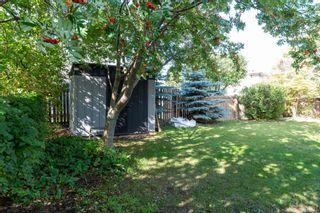 Photo 4:  in Edmonton: Zone 16 House for sale : MLS®# E4263667