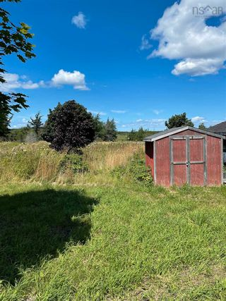 Photo 4: 169 WILSON Road in Reserve Mines: 203-Glace Bay Residential for sale (Cape Breton)  : MLS®# 202120370