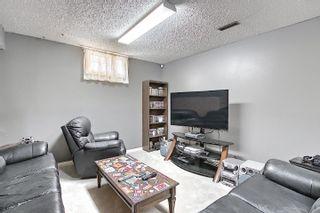 Photo 48: 9832 187 Street in Edmonton: Zone 20 House for sale : MLS®# E4253744