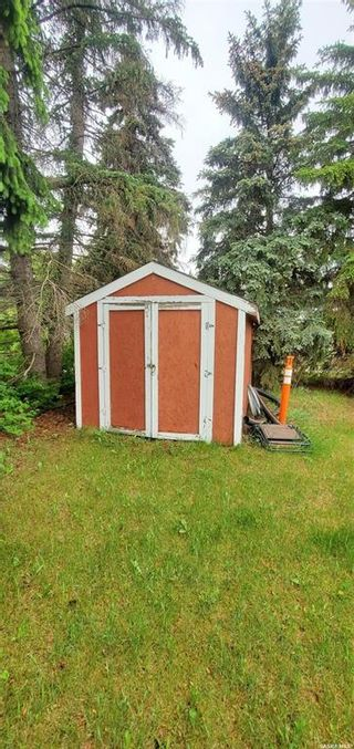 Photo 39: 307 Willow Street in Wolseley: Residential for sale : MLS®# SK859300