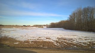 Photo 7: 68 25527 TWP RD 511A Road: Rural Parkland County Rural Land/Vacant Lot for sale : MLS®# E4191640
