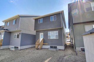 Photo 45: 77 Corner  Ridge Mews NE in Calgary: Cornerstone Detached for sale : MLS®# A1116655