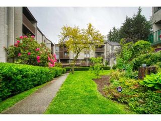 """Photo 2: 402 340 GINGER Drive in New Westminster: Fraserview NW Condo for sale in """"FRASER MEWS"""" : MLS®# R2599521"""