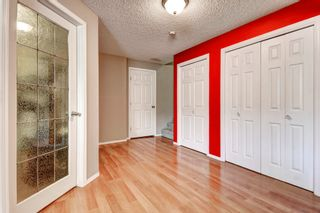 Photo 27: 101 Copperfield Gardens SE in Calgary: House for sale : MLS®# C4019487