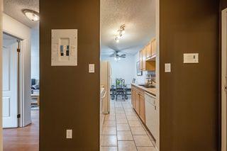 Photo 3: 409 10529 93 Street in Edmonton: Zone 13 Condo for sale : MLS®# E4250326
