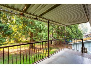 """Photo 35: 3625 208 Street in Langley: Brookswood Langley House for sale in """"Brookswood"""" : MLS®# R2496320"""