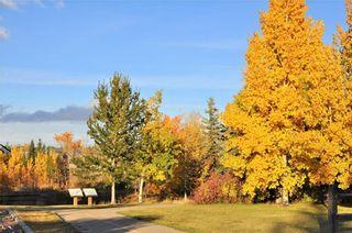 Photo 36: 169 ROCKY RIDGE Cove NW in Calgary: Rocky Ridge House for sale : MLS®# C4140568