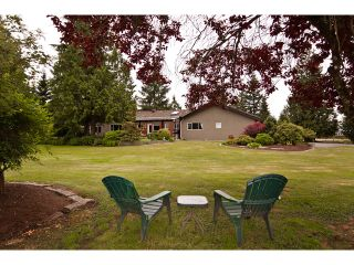 Photo 9: 15146 HARRIS Road in Pitt Meadows: North Meadows House for sale : MLS®# V899524