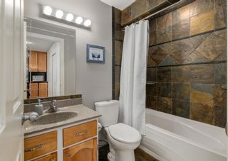 Photo 24: 72 Riverbirch Crescent SE in Calgary: Riverbend Detached for sale : MLS®# A1094288