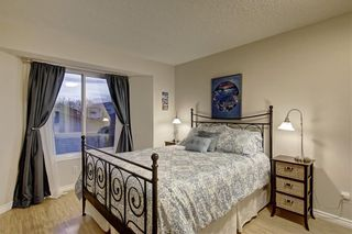 Photo 12: 131 MT APEX Green SE in Calgary: McKenzie Lake Detached for sale : MLS®# C4275506