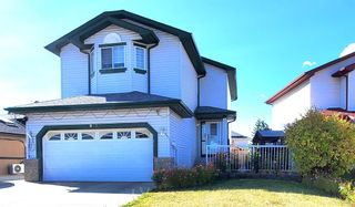 Photo 46: 813 Applewood Drive SE in Calgary: Applewood Park Detached for sale : MLS®# A1076322