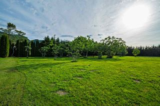 "Photo 20: 39237 VYE Road in Abbotsford: Sumas Prairie House for sale in ""SUMAS FLATS"" : MLS®# R2067676"