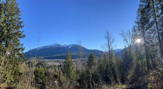 Photo 4: 4149 SLESSE Road in Chilliwack: Chilliwack River Valley Land for sale (Sardis)  : MLS®# R2529886