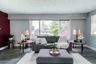Photo 4: 22738 124 Avenue in Maple Ridge: East Central House for sale : MLS®# R2373471