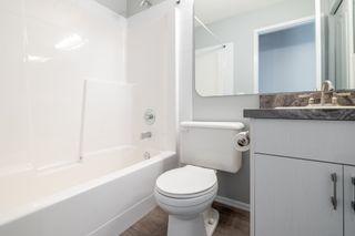 Photo 34: : St. Albert House for sale : MLS®# E4254945