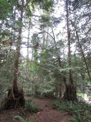 Photo 89: 1966 Gillespie Rd in : Sk 17 Mile House for sale (Sooke)  : MLS®# 878837