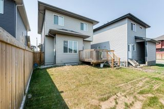 Photo 31: 7322 ARMOUR Crescent in Edmonton: Zone 56 House for sale : MLS®# E4254924