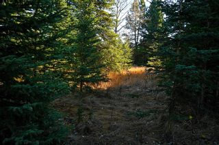 Photo 27: 20.02 Acres +/- NW of Cochrane in Rural Rocky View County: Rural Rocky View MD Land for sale : MLS®# A1065950