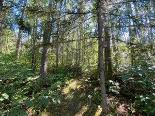 Photo 14: 18 463017 RGE RD 12: Rural Wetaskiwin County House for sale : MLS®# E4252622