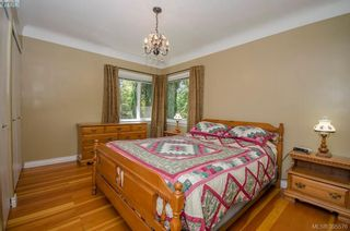 Photo 21: 4035 Saanich Rd in VICTORIA: SE High Quadra House for sale (Saanich East)  : MLS®# 793152