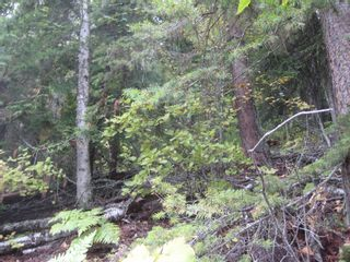 Photo 2: 12 Vickers Trail in Anglemont: Land Only for sale : MLS®# 10055802