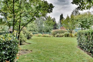 Photo 19: 19528 Fraser Highway in Surrey: Cloverdale Condo for sale : MLS®# R2098502