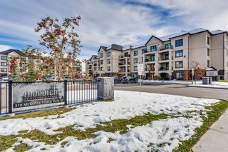Photo 1: 3411 310 MCKENZIE TOWNE Gate SE in Calgary: McKenzie Towne Apartment for sale : MLS®# C4232426