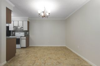 Photo 10: 104 4363 HALIFAX STREET in Burnaby: Brentwood Park Condo for sale (Burnaby North)  : MLS®# R2402101