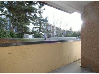 """Photo 17: 107 8870 CITATION Drive in Richmond: Brighouse Condo for sale in """"CARTWELL MEWS"""" : MLS®# V1036917"""