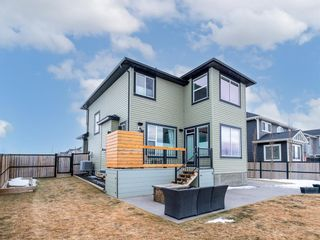 Photo 38: 197 Rainbow Falls Heath: Chestermere Detached for sale : MLS®# A1062288