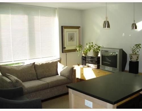 Main Photo: 306 1055 HOMER Street in Vancouver West: Downtown VW Home for sale ()  : MLS®# V709998