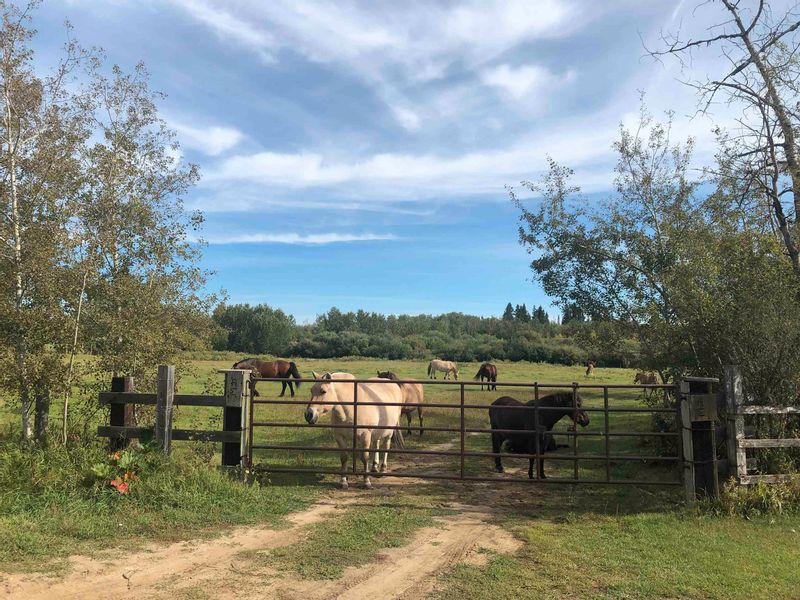FEATURED LISTING: Rge Rd 231 North of Twp Rd 564 Rural Sturgeon County