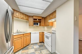 Photo 9: 201 2425 90 Avenue SW in Calgary: Palliser Apartment for sale : MLS®# A1052664