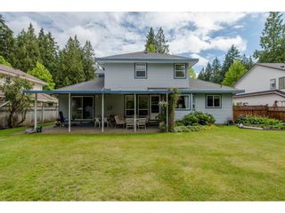 Photo 19: 21093 43 Avenue in Langley: Brookswood Langley House for sale : MLS®# R2088477
