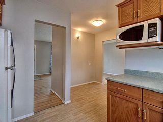 Photo 10: 16322 87 Avenue in Edmonton: Zone 22 House for sale : MLS®# E4251008