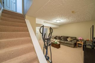 Photo 25: 49 Templeson Crescent NE in Calgary: Temple Detached for sale : MLS®# A1089563